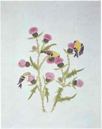 #389 Goldfinches & Thistles [Currently not available]
