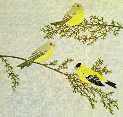 #47 - Goldfinches