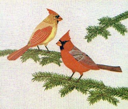 #81 - Cardinals